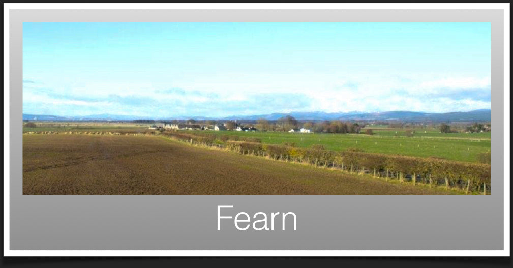 Fearn Recommendations