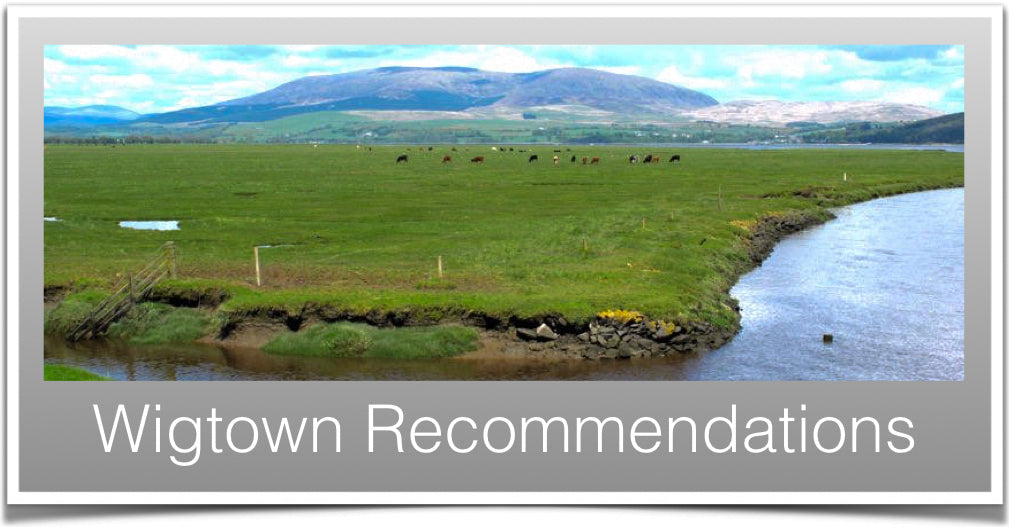 Wigtown Recommendations