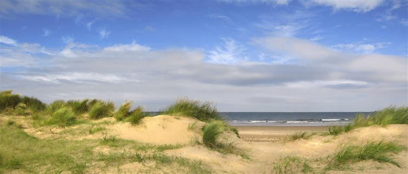 A beautiful afternoon on the dunes in North Norfolk