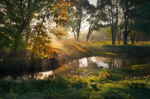 Autumn Morning on the River