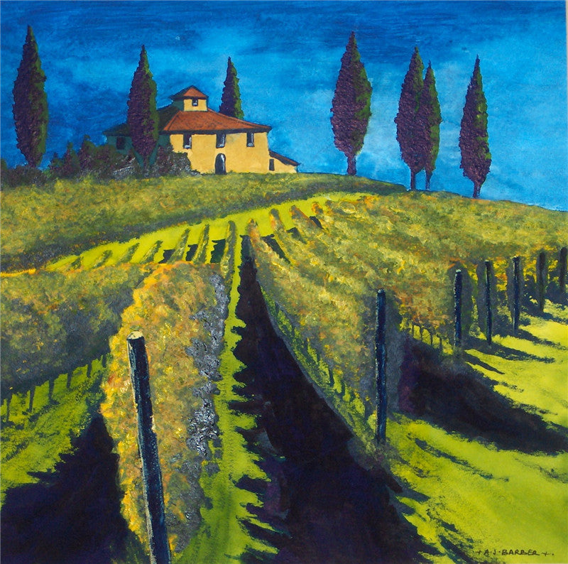 Vineyard - Tuscany