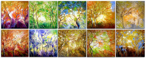 Seasons (Nature Series)