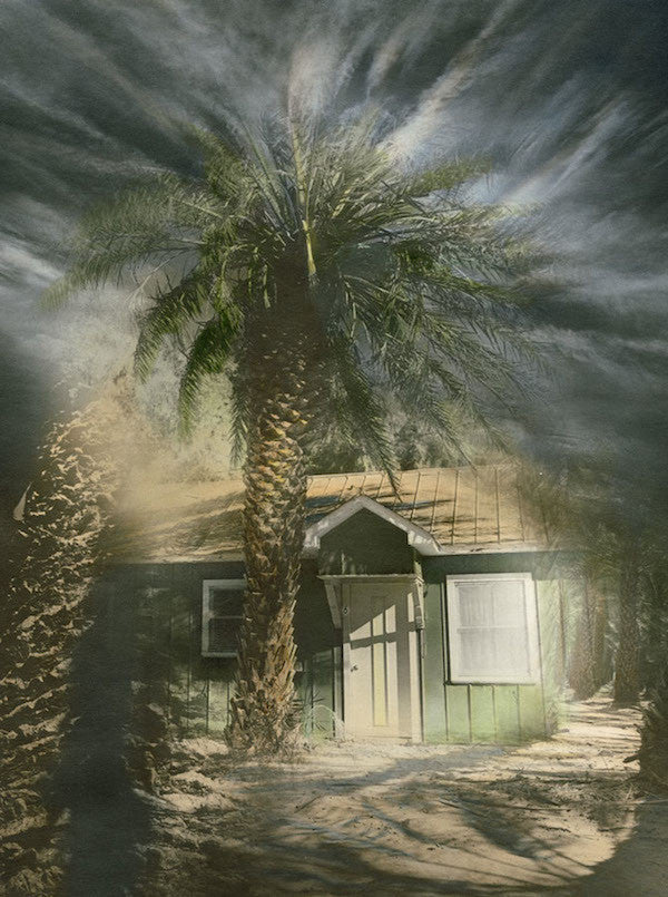 A Surreal photograph with a small green house and a large palm tree