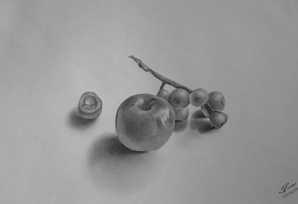 Still life study of a Loquat Bunch with apple in pencil