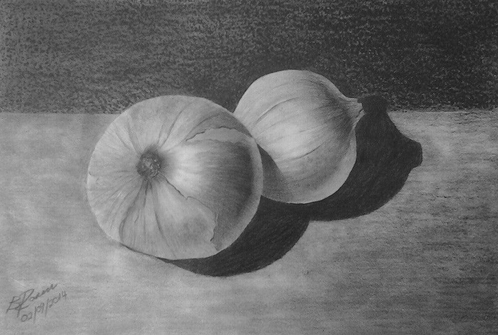 Still life study of a 2 onions ready to cook in pencil
