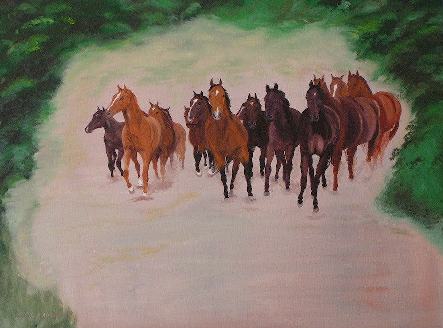 Herd of Young Horses in Canter
