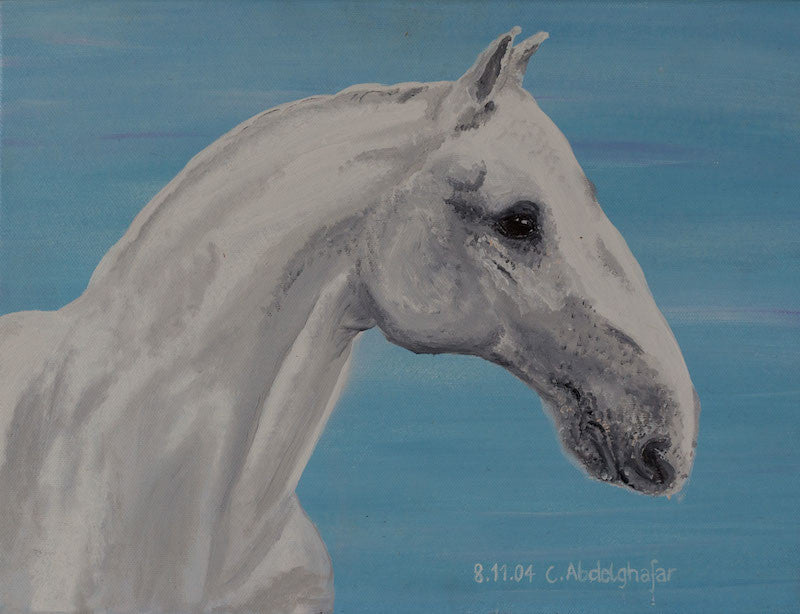 Oil painting of a white Lippizan horse with special nose