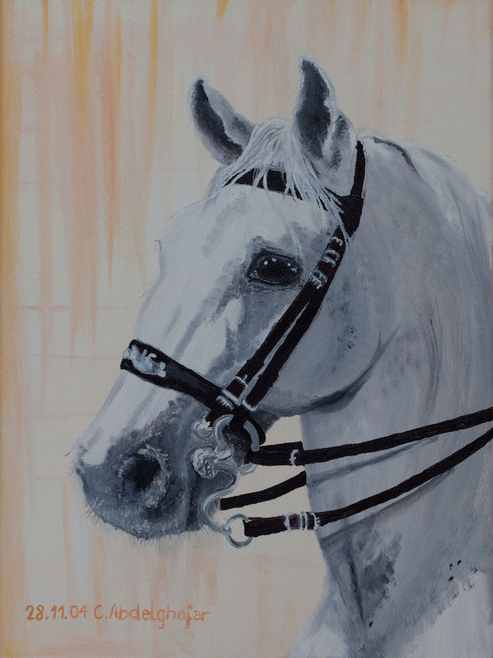 Oil painting of a Lippizan horse with special bridle