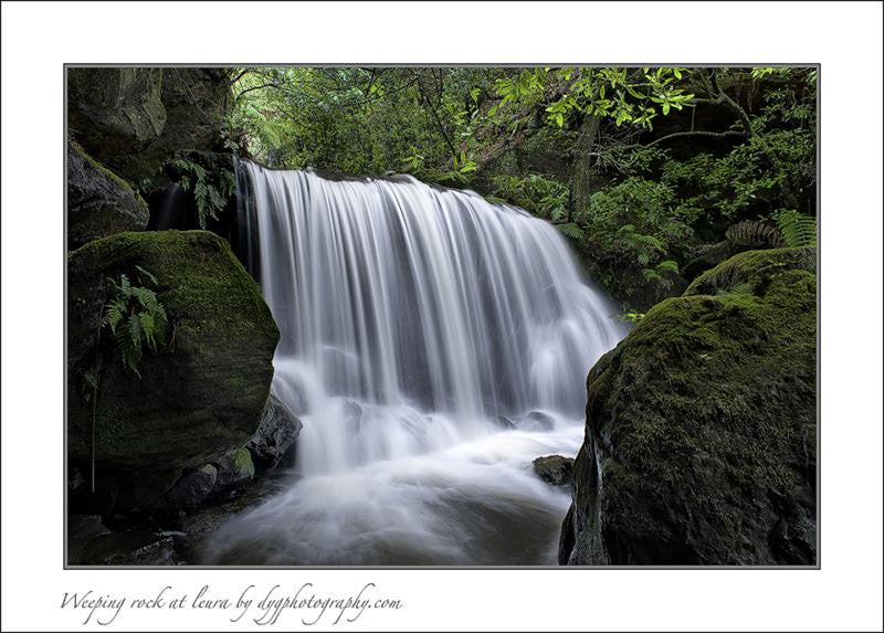 Long exposure photograph of a fast running waterfall in a deep green broadleaf forest