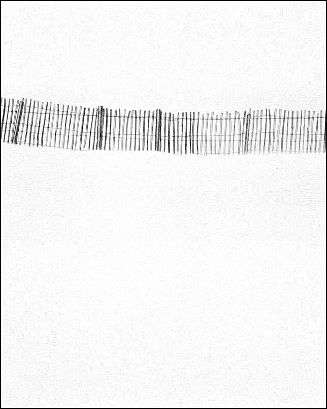 Snowfence, Cairngorm, Inverness-shire, Scotland (2005)