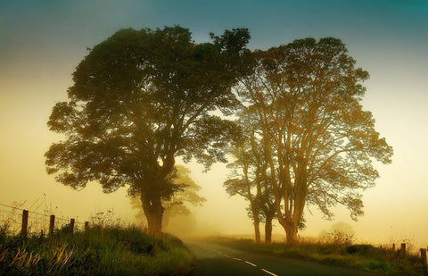 Twilight Guardians. Misty Roads of Scotland