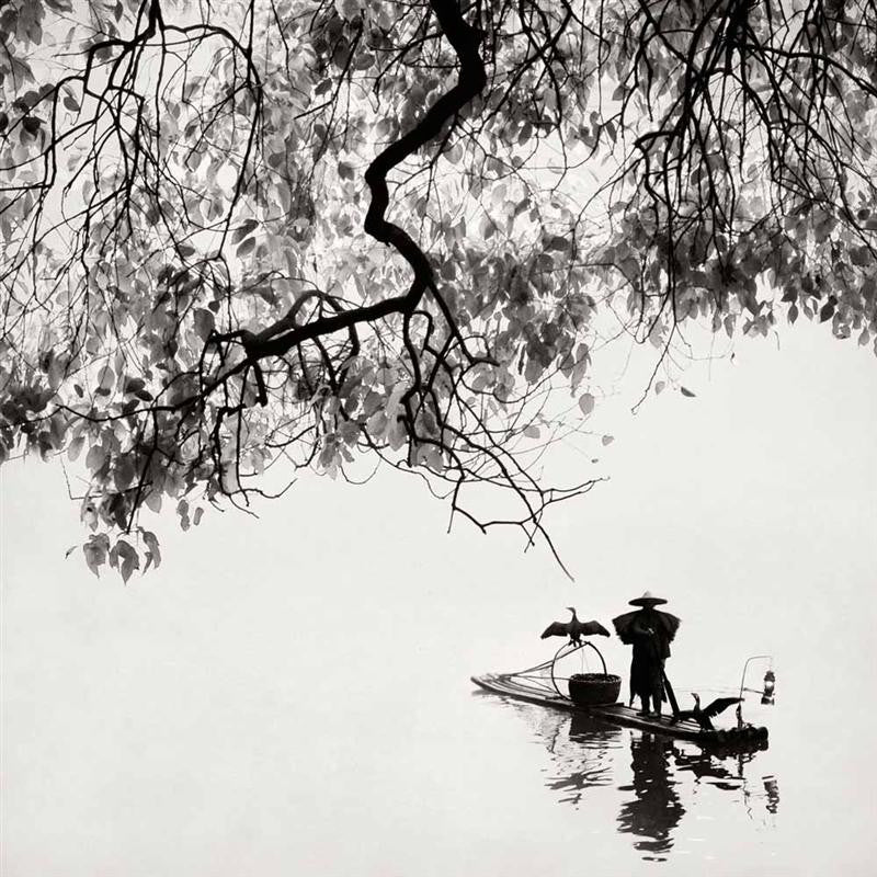 Cormorant Fisherman, Li River, China