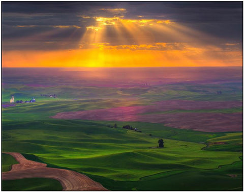 Sun Beams In The Palouse