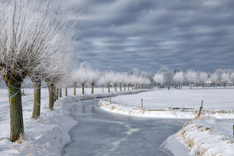 Holland in Winter
