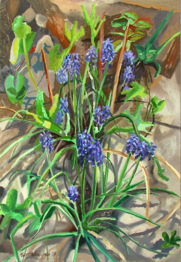 Little Grape Hyacinth