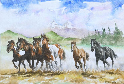 Herd of Horses Running