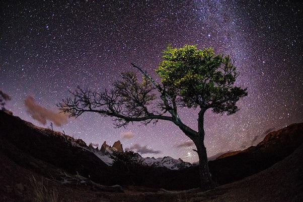 Patagonia Nightscape