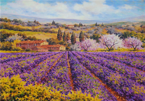 Lavender in Val d'Orcia, Tuscany