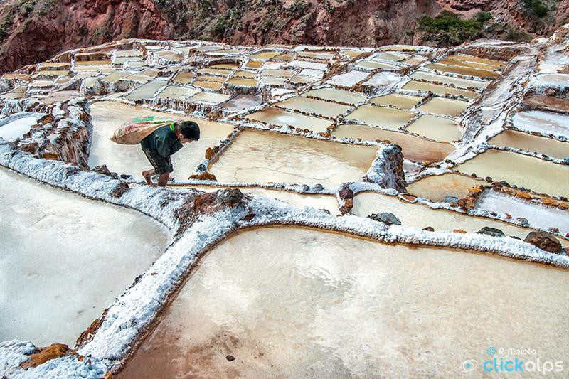 Inca Salt Worker