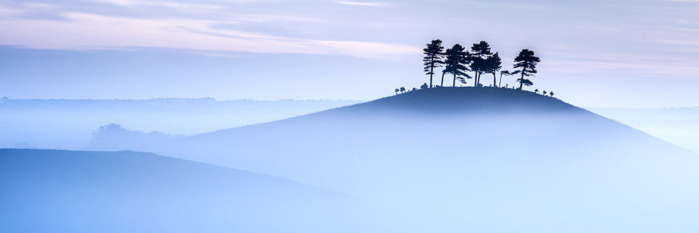 Morning Mist at Colmers Hill