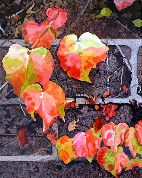 Virginia Creeper, Late Autumn