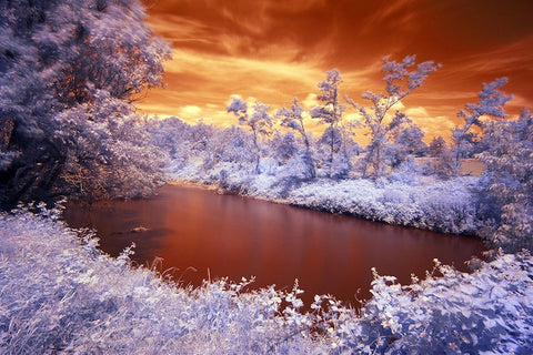 Infrared Countryside