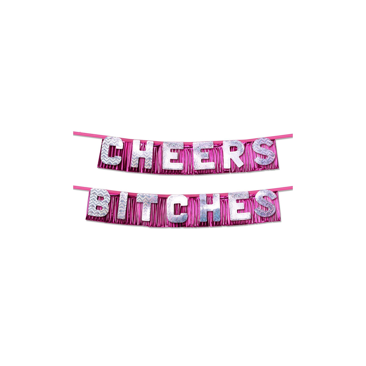 "Favors ""Cheers Bitches"" Party Banner"