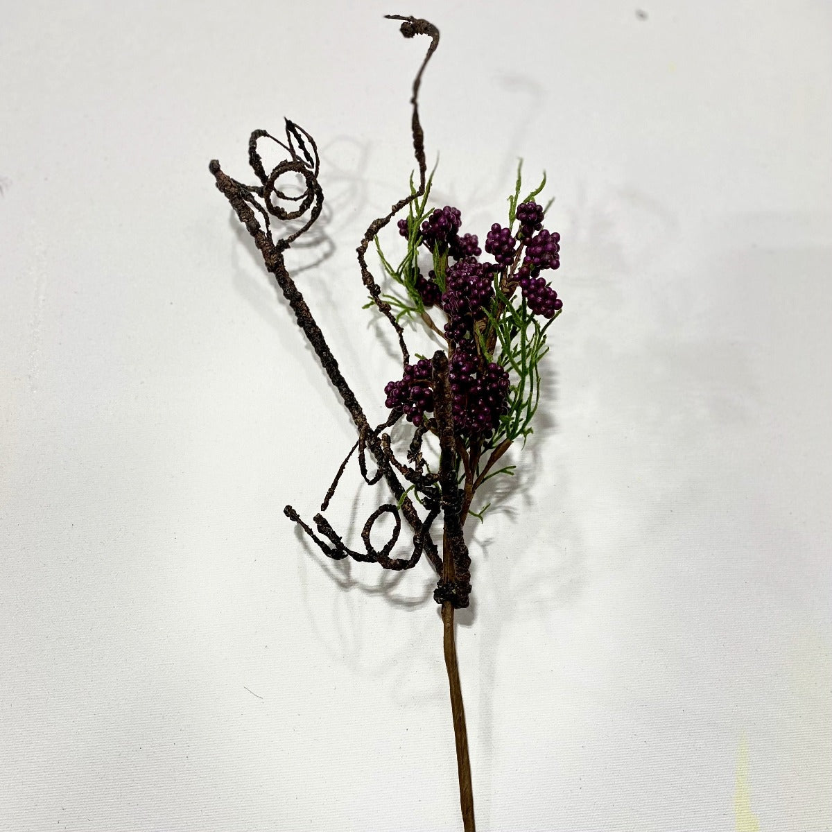 Blackberry sprig/spray