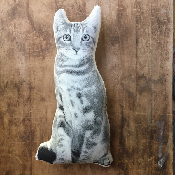 Surprised Kitty Decorative Printed Pillow