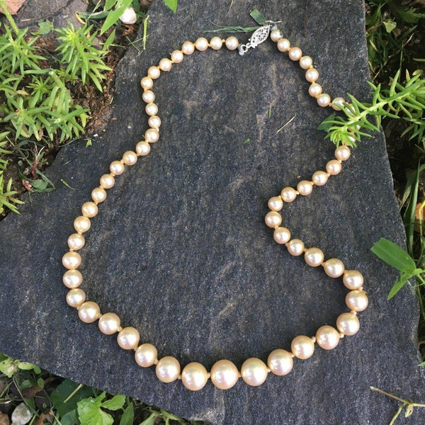 P119 - Poil/Pearls: Single Graduated Strand Necklace