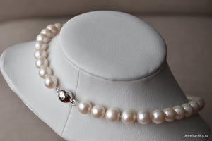 White Freshwater Pearl Necklace, 9.5-10.5mm