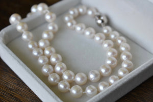 White Freshwater Pearl Necklace, 7.5-8.5mm