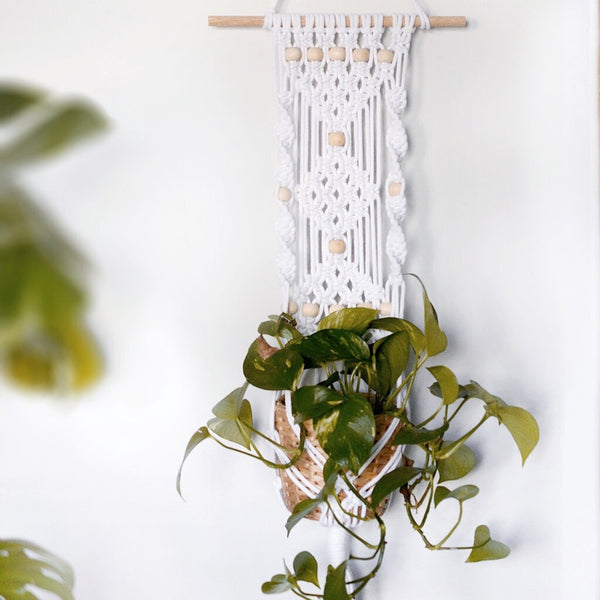 Create a Gorgeous Beaded Macrame Plant Hanging