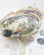 Load image into Gallery viewer, Abalone Smudging Smudge - Rosie's Market
