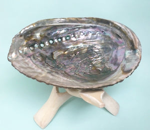 What is Abalone used for - Rosie's Market
