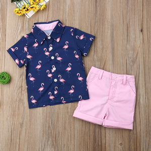 Hot Sells 2PCS Set Toddler Kid Boy Flamingo Tops T-shirt Shorts Pants Outfits Clothes