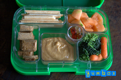 New Protein Sources for Lunch - Veggie Proteins for Kids and more!