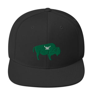 """Bully"" kelly green full back snap back (4 colors)"