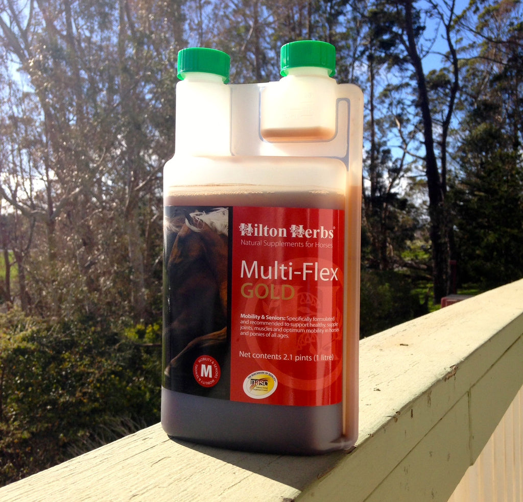 MF Gold- Natural Joint Supplements for Horses from Whole Equine