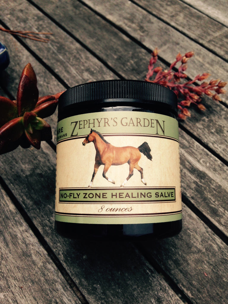 No Fly Zone Salve- Natural Fly Repellent from Whole Equine