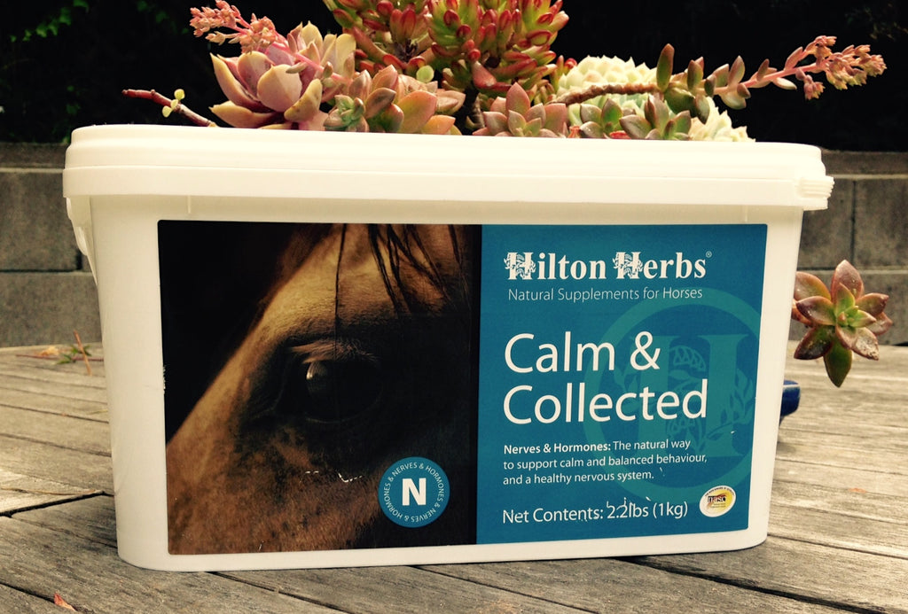 Calm & Collected Calming Supplement for Horses from Whole Equine