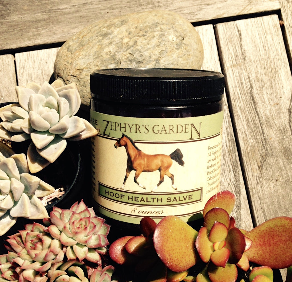 Hoof Health Salve
