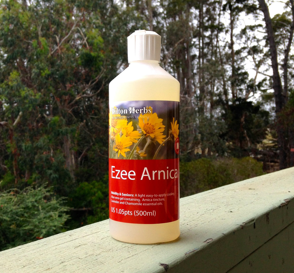 Ezee Arnica Natural Liniment for Horses Whole Equine
