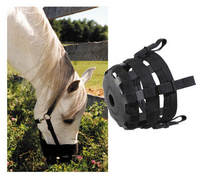 Best Friend Standard Grazing Muzzle
