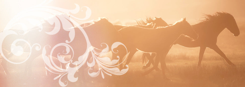 Natural Horse Care News Information Supplements