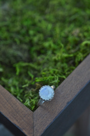 Exclusive VIP Holiday Shopping - Rainbow Moonstone Gemstone Gallery Ring - Sterling Silver Classic Ring - Size 7.75