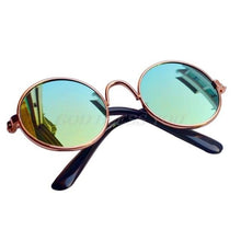 Load image into Gallery viewer, Pet Sunglasses - Sunglass Associates,Sunglasses Online, Sunglass Deals, Sunglassassociates, www.sunglassassociates.com