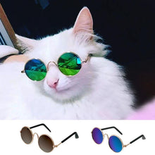 Load image into Gallery viewer, Cat Pet Sunglasses - Sunglass Associates,Sunglasses Online, Sunglass Deals, Sunglassassociates, www.sunglassassociates.com  pilot, cat eye, kids, men, adult, vintage, free shipping