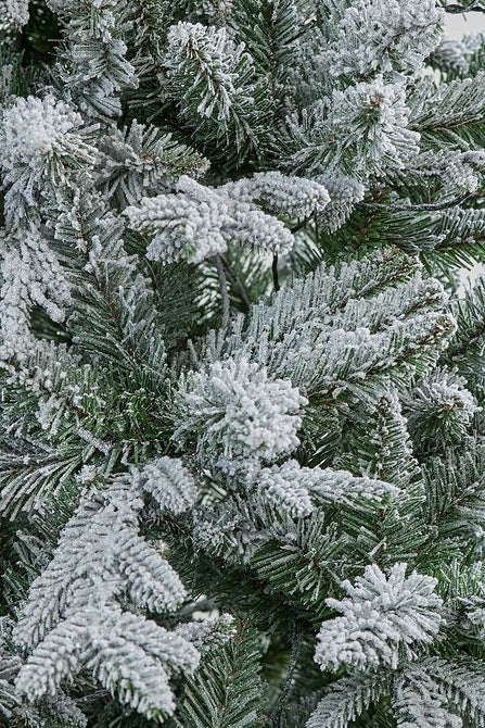 7ft Pre-lit Snow Covered Ashley Pine Christmas Tree
