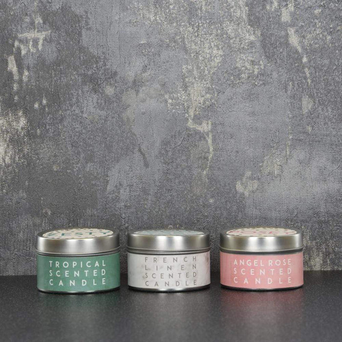 Zesty Calm Posey Set of 3 Small Tin Candles Pineapple, Frensh Linen, Angel Rose Scent 60g